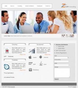 Zair-SAP-Consulting-Website